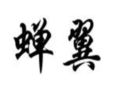 深圳市蝉翼无人机有限公司