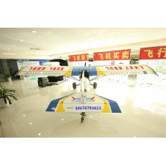 广州固定翼飞机出租