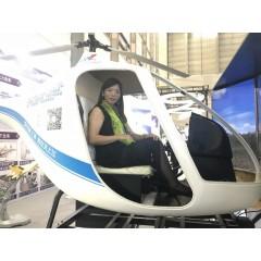 佛山直升机模拟器租赁