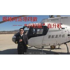 直升机托管服务
