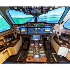 919全动飞行模拟器